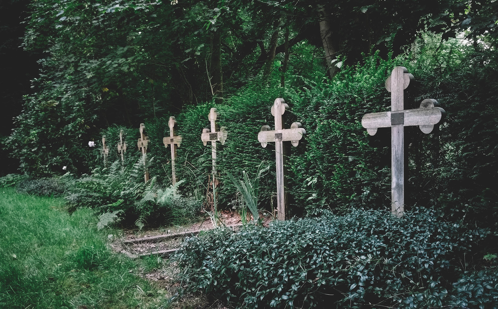 acourseindying_nijmegen_cemetery_ubbergen_refter_nuns_01